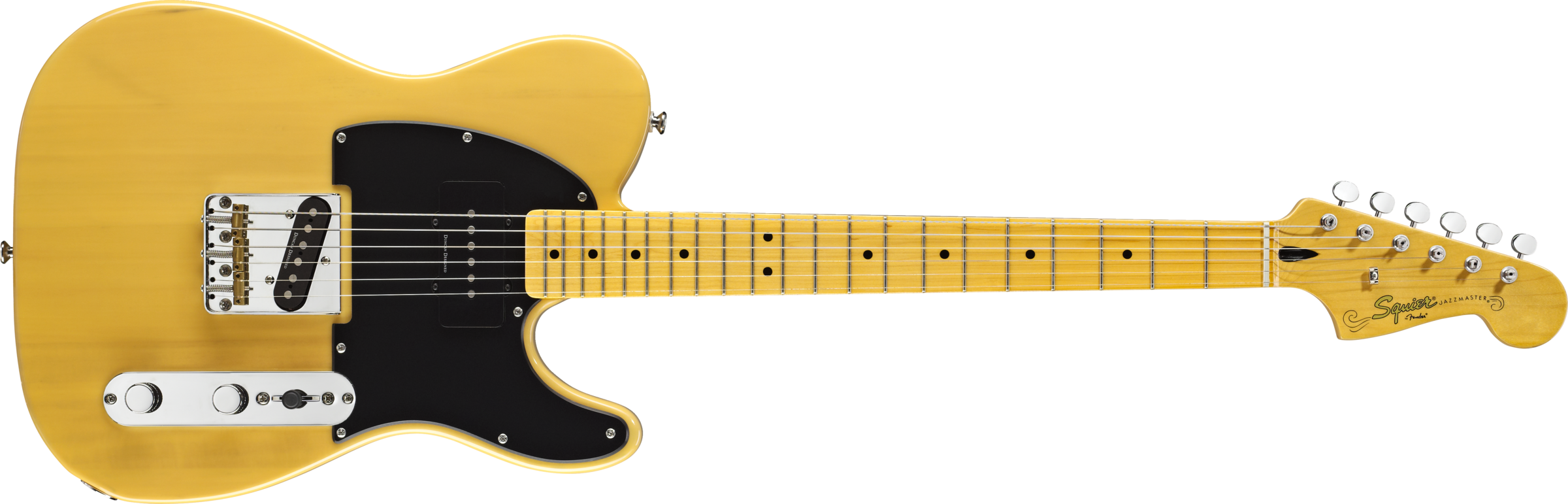 squier image .png