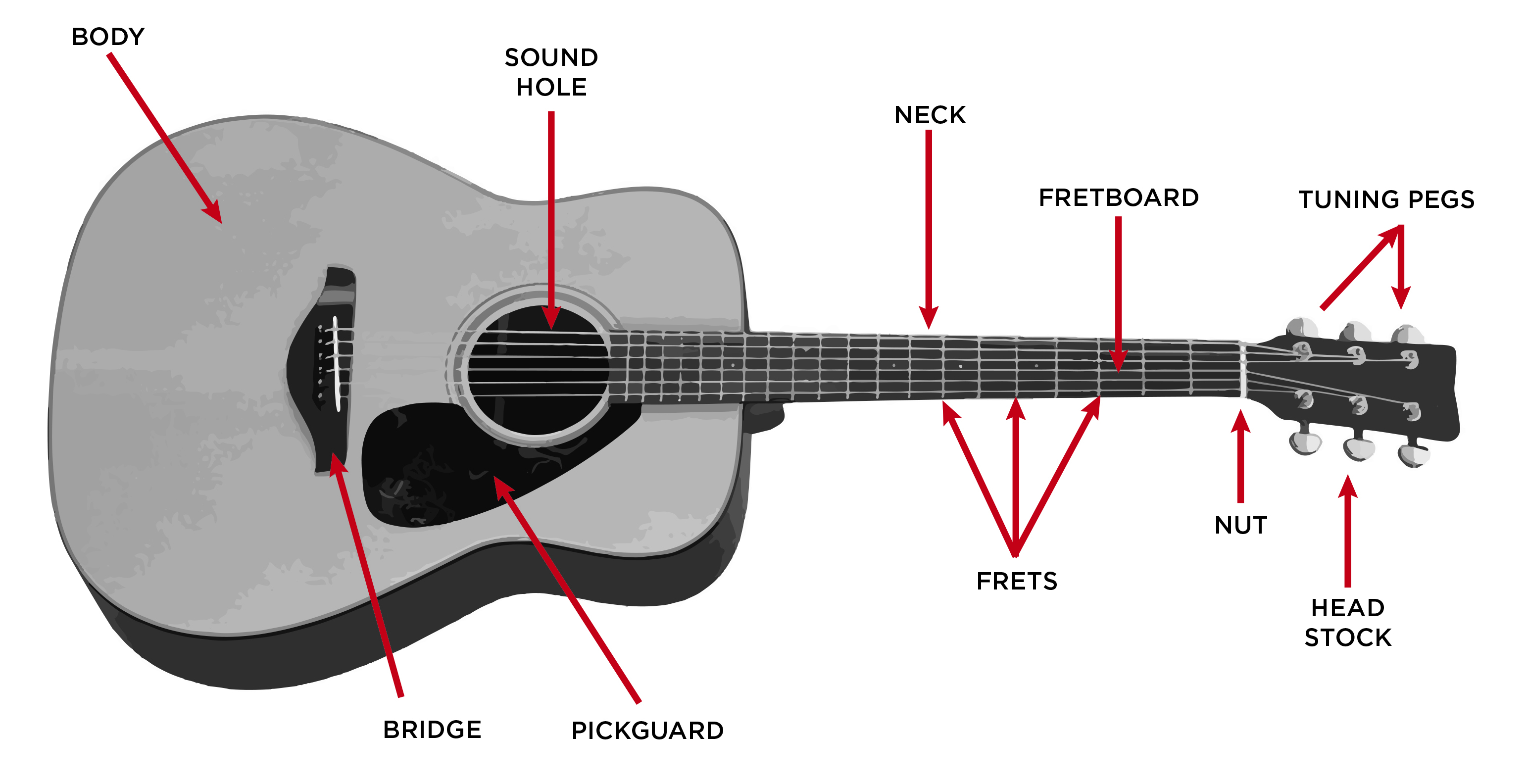 Acoustic_Guitar_Diagram-e1428680792528.jpg